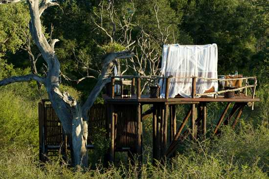 This is one five star treehouse experience