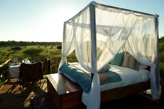 Chalkley Treehouse is a beautiful remote venue to view scenery from