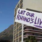 Let our rhinos live!