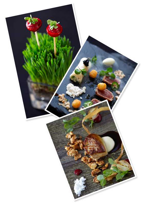 A selection of dishes from Cellars Hohenort