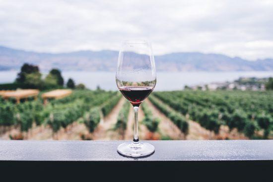 Vinho com vinhedos ao fundo