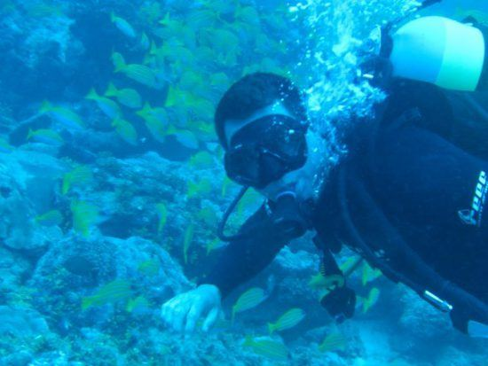 David Ryan explorando las maravillas submarinas en Seychelles