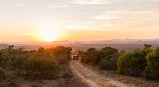 Reisen nach Südafrika: Eine Gruppe auf einer Safari bei Sonnenuntergang