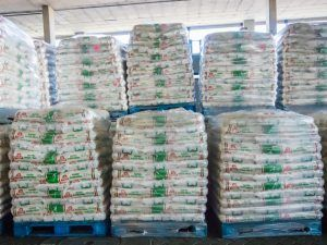 Maize before deliver for Food for Africa