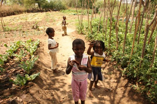 Children near Royal Chundu