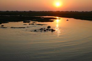 Sunsets and hippos in Lower Zambezi, Zambia - with Niki