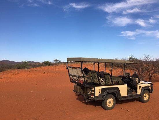 Et c'est parti pour notre dernier safari